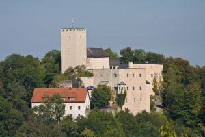 Burg, Falkenstein (Oberpfalz)
