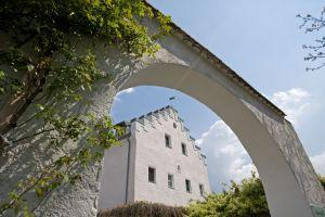 Schloss Chameregg, Cham