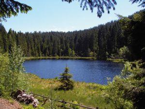 Herrenwieser See, Forbach