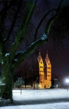 Basilika St. Kastor, Koblenz
