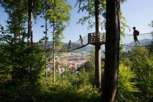 Baumkronenweg und Riesenröhrenrutsche, Waldkirch