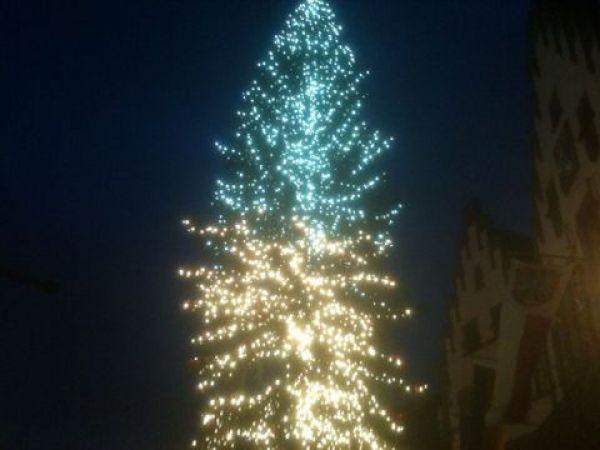 Weihnachtsbaum des Frankfurter Weihnachtsmarkts