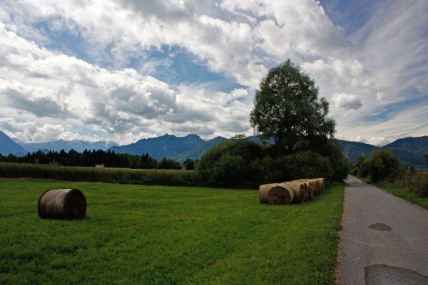 Rundwanderweg Murnauer Moos