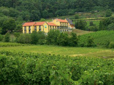 Wohlfühlhotel Alte Rebschule, Rhodt