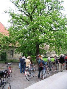 Stadt Lippstadt