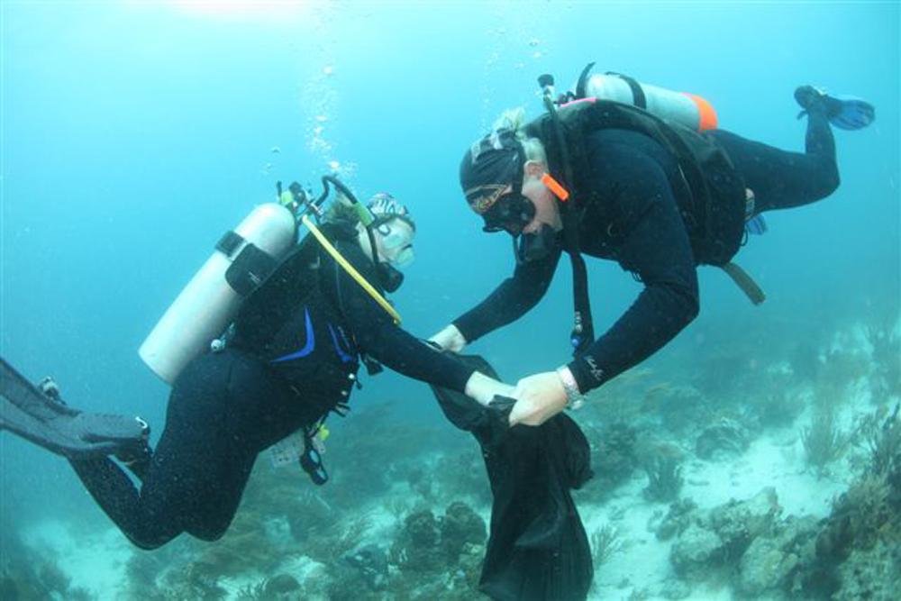 Höchste Teilnehmerzahl seit 15 Jahren beim Aruba Reef Care Project!