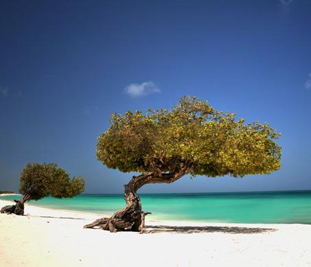 Aruba leichter erreichbar: