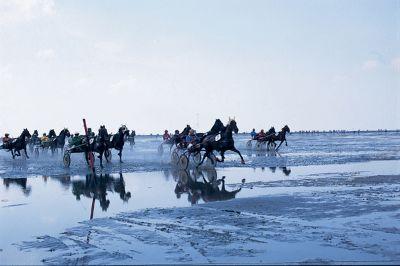 Pferderennen auf dem Meeresgrund