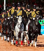 Ein Fest für Pferdeliebhaber: