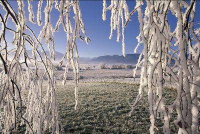Besinnliche Vorweihnachtszeit im Alpenhof Murnau