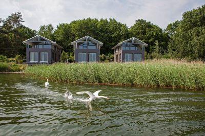 Neu auf Rügen: Naturoase Gustow