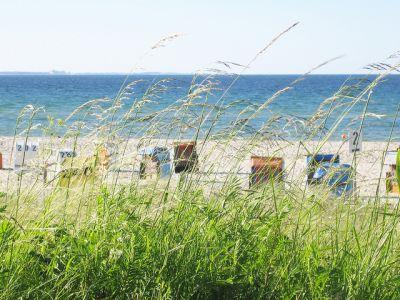 Die Strand- und Badesaison in Damp ist eröffnet!