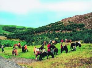 Kurzreise im Norden und Reittrekking auf Islandpferden