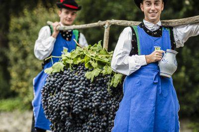 Weinherbst in Schenna