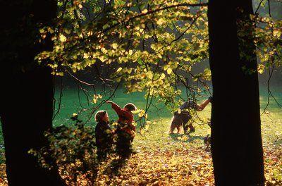Auf Entdeckertour durch die Herbstferien