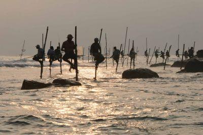 Die Zeit ist reif für Sri Lanka