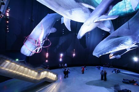 1 Million Besucher im Stralsunder Ozeaneum