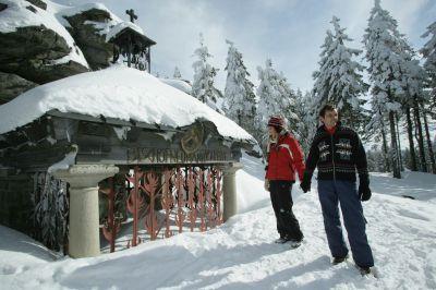 Bärentreff im Schnee: