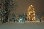 28 Meter hoch und rund 1000 Kerzenlichtern
