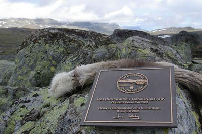 Neuer Nationalpark Hallingskarvet eröffnet