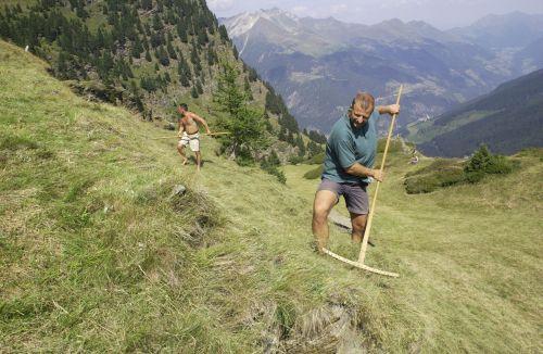 Zur Heuernte auf die Roter Hahn-Höfe in Südtirol