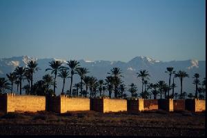 Wikinger Reisen mit acht- und zehntägigen Erlebnis-Studienreisen