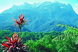 Neue Entdeckerreise ins sagenumwobene Sarawak