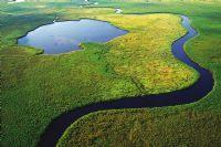 Naturparadies Botswana