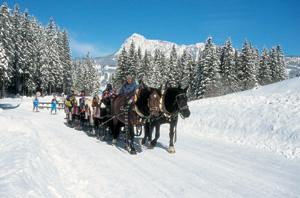 Mit Pferd und Kutscher durch das winterliche Tannheimer Tal