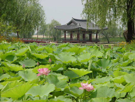 Korea im Sommer