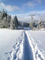 Silvester im winterlichen Böhmerwald