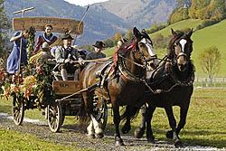 Vielfältig und bunt zeigt sich der Kaiserherbst im Ferienland Kufstein